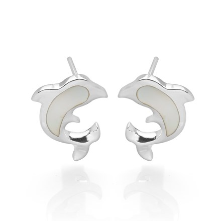 Shimmering Dolphin Studs