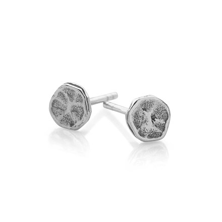 Stepping Stone Studs